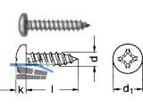 Blechschraube Linsenkopf A2 DIN 7981 2,9 x  6,5