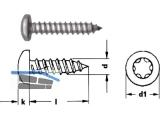 Blechschraube Linsenkopf A2 Torx 20 DIN 7981 4,2 x 60