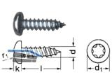 Blechschraube Linsenkopf A2 Torx 20 DIN 7981 4,2 x 38
