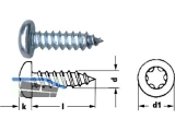 Blechschraube Linsenkopf verzinkt Torx25 DIN 7981 4,8 x 19