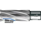 BDS HM-Kernbohrer HKL lange Aus- führung d 14x55 Weldon 19mm
