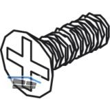 Befestigungsschrauben zu Festglashalteprofil - M 3 x 8, StahL - verzinkt