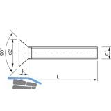 ~ISO10642  8.8 M10x 25 Torx 50 verzinkt Senkschraube
